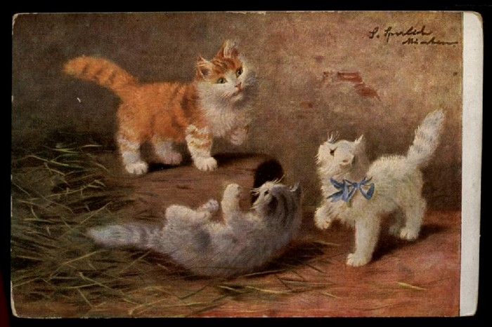 Sophie Sperlich, Three Kittens, Postcard