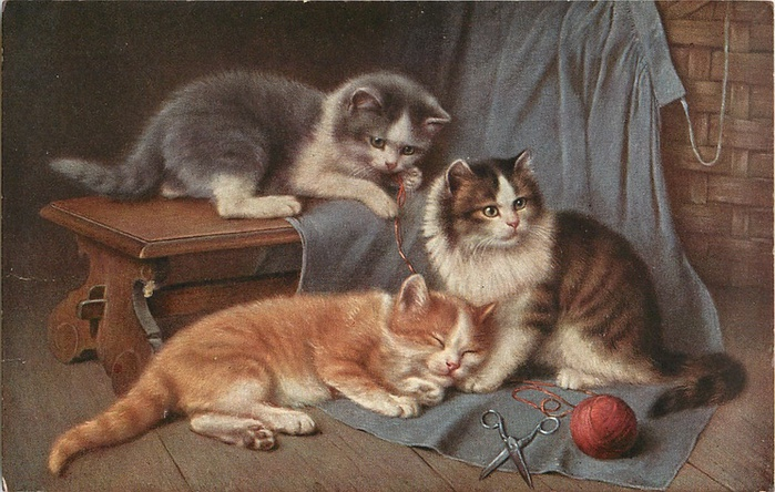 Wilhelm Schwar, Cats and Sewing