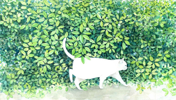Midori Yamada19-White cat with green background