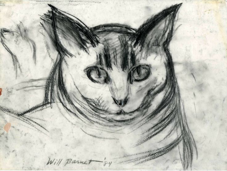Will Barnet - Minou-Study of Head, 1989. Charcoal and pencil on vellum. (Minou was Barnet's feline companion throughout many of his most prolific years.