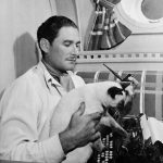 Erol Flynn and cat, famous cat lovers