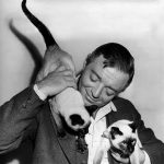 Peter Lorre and cats, famous cat lovers
