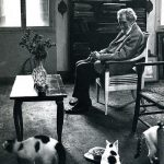 Ezra Pound and cats