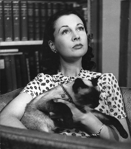 Vivien Leigh and cat New Boy, 1946