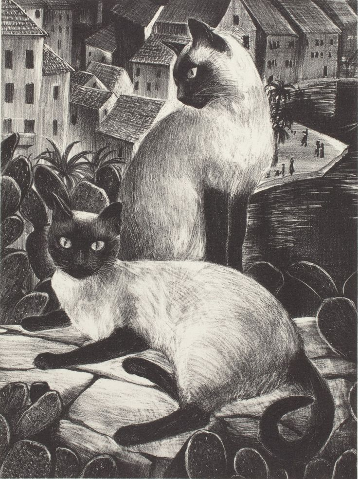 The Sailor's Cats, lithograph - Agnes Tait
