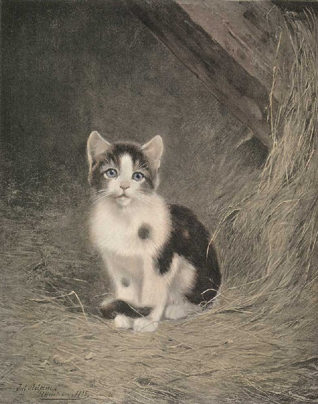 Black and White Kitten Julius Adam II Private Collection cats in art