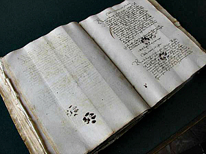 Middle Ages Manuscript with cat paw prints