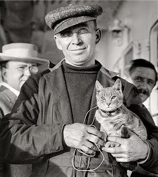 Kiddo and Melvin Vaniman cats in history