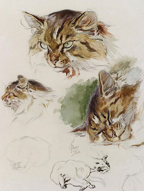 Ferdinand Oger, Studies of a Cat