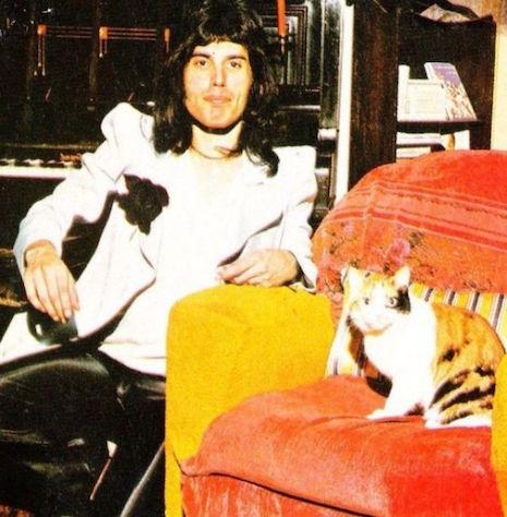 Freddie Mercury with Jerry