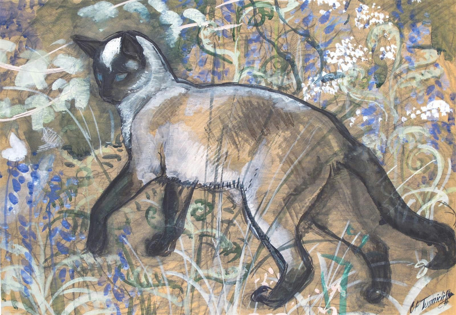 A Siamese cat stalking a butterfly amongst bluebells - C F Tunnicliffe (1901-1979)