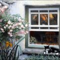Cat on a Window Ledge, Stephen Darbishire