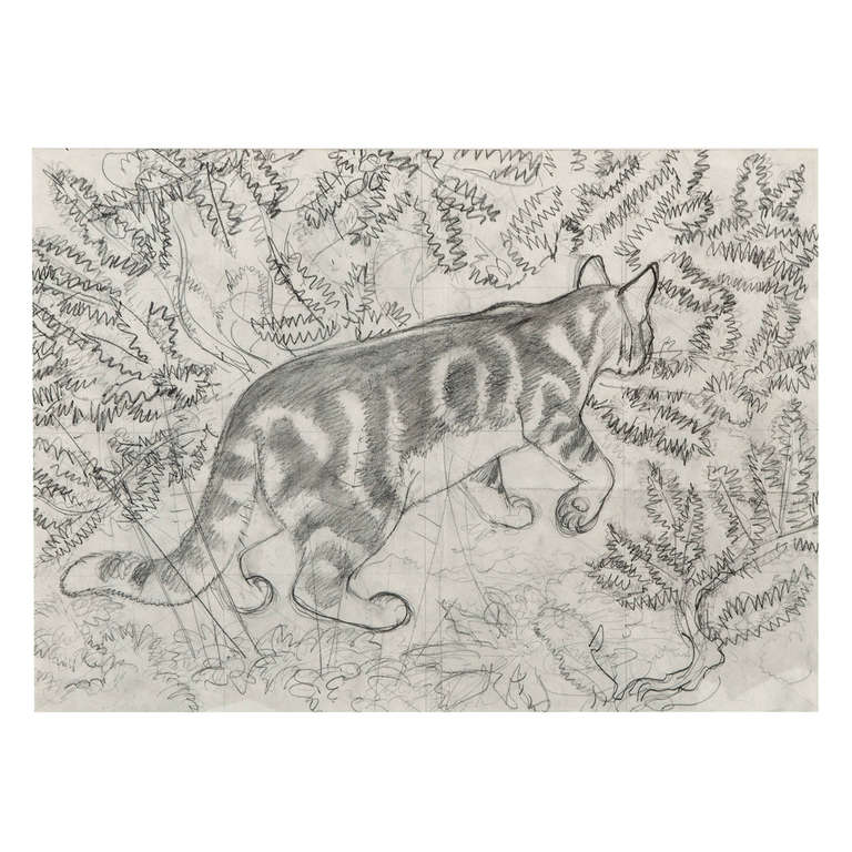 Charles Frederick Tunnicliffe, Pencil Drawing of Cat