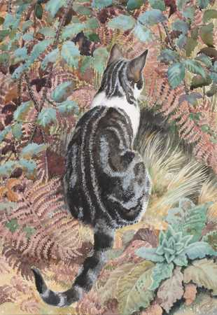 Tabby Cat Amongst Foliage, Charles Frederick Tunnicliffe
