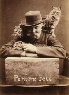 Harry Pointer and his Cats