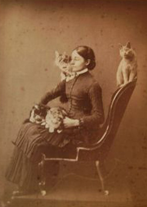 Probably Harry Pointer's daughter Myra Pointer with cats 1880