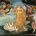 Svetlana Petrova, Fat Cat Venus