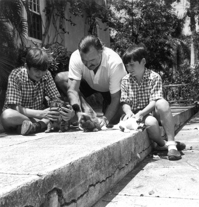 Ernest Hemingway Polydactyl Cats