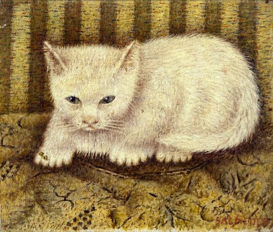 Sal Meijer, White Cat