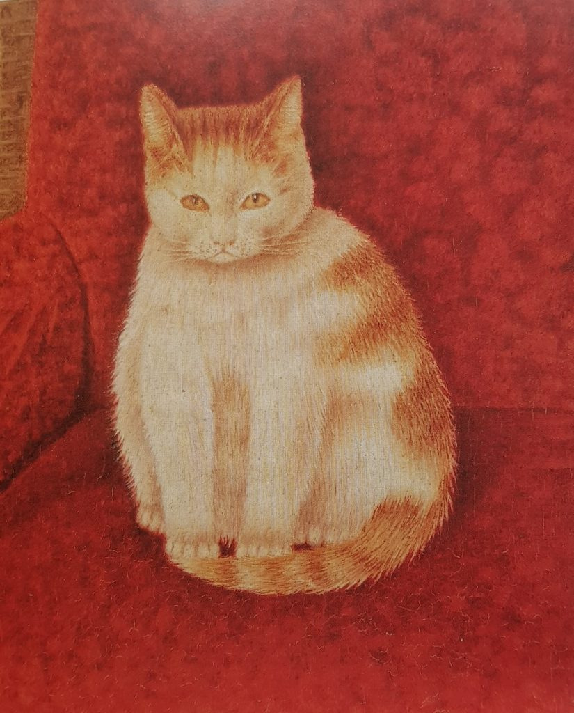Tabby Cat on Red, Sal Meijer