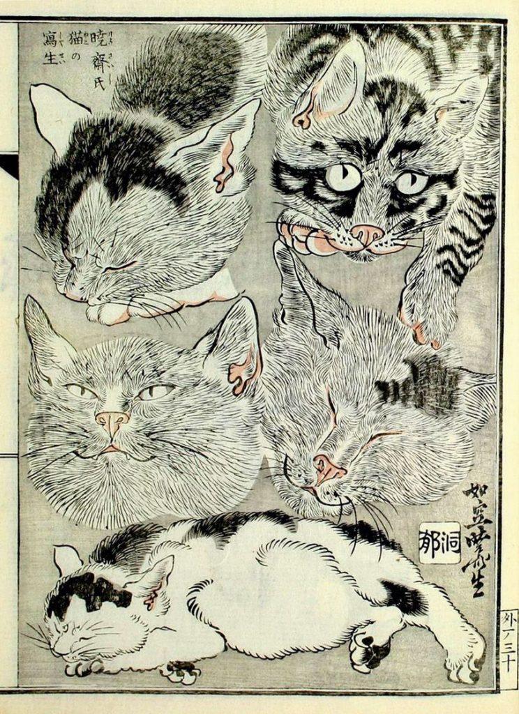 Cats, Kawanabe Kyosai