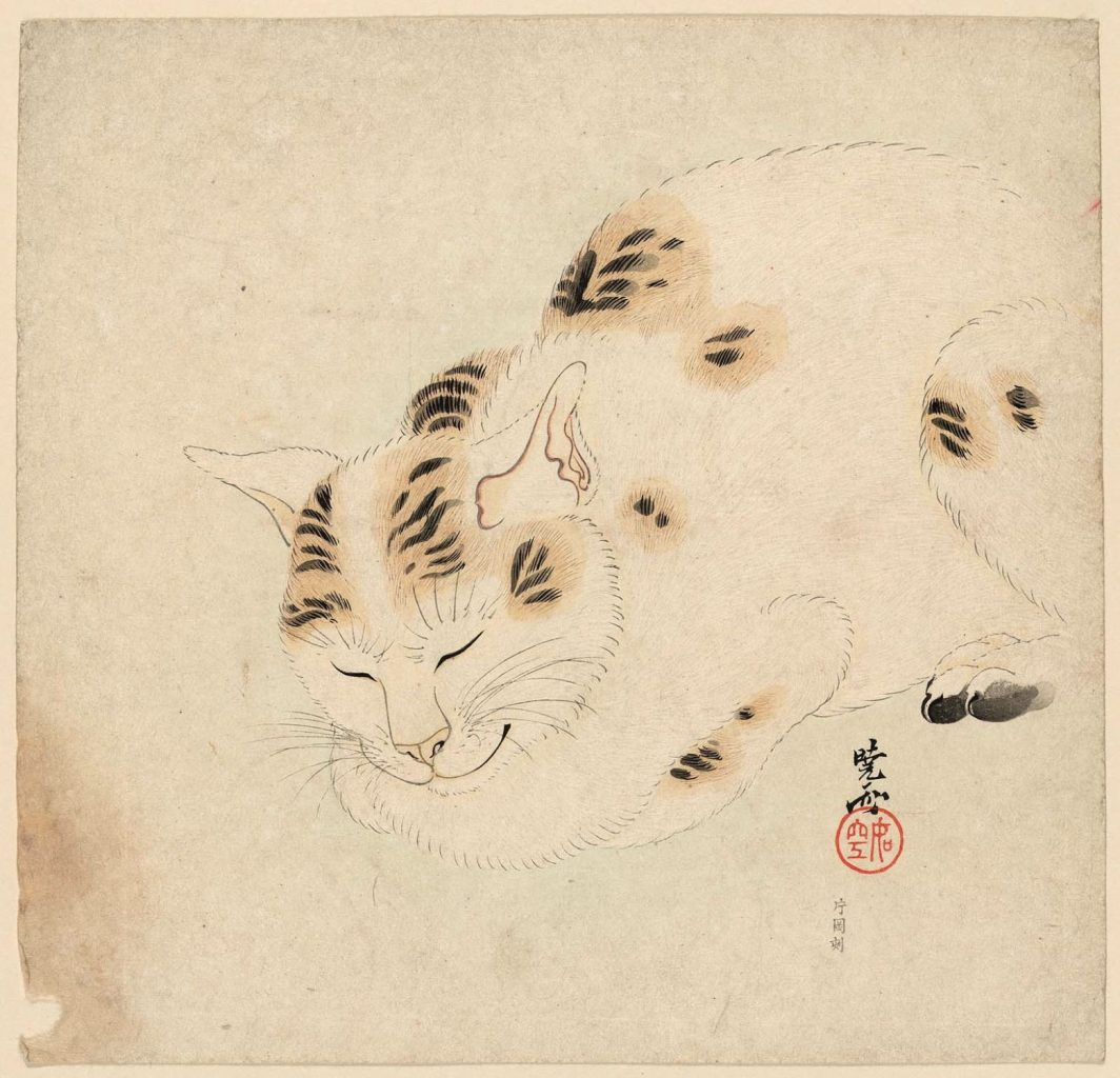 Kawanabe Kyosai, Sleeping Cat