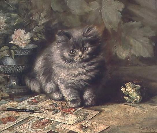 A Portrait of a Kitten, Ada Eliza Tucker