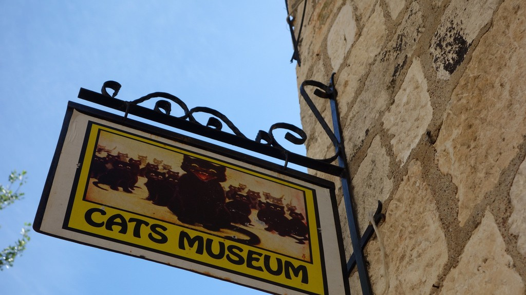cat museums at The Great Cat