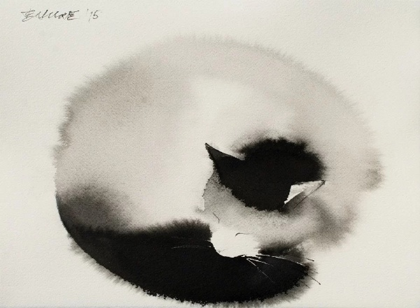 Endre Penovac, Black and White Cat Curled