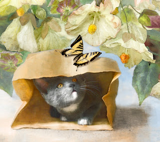 Dianne Woods, Cat in a Bag