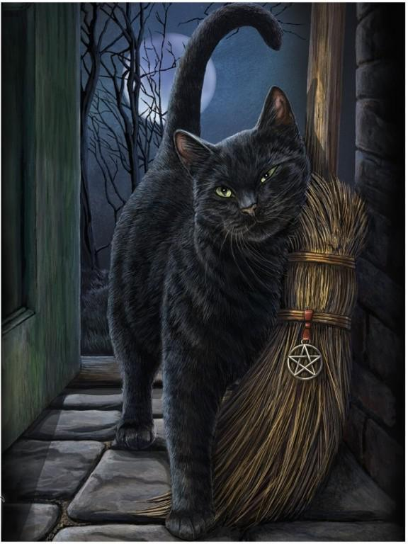 Black Cat and Broom, Lisa Parker