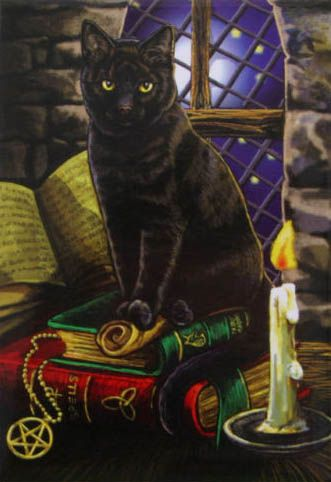 Black Cat on Magical Books, Lisa Parker