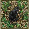Lisa Parker, black cat