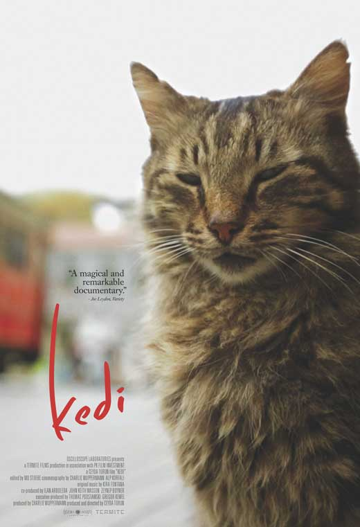 kedi-movie-poster-2017
