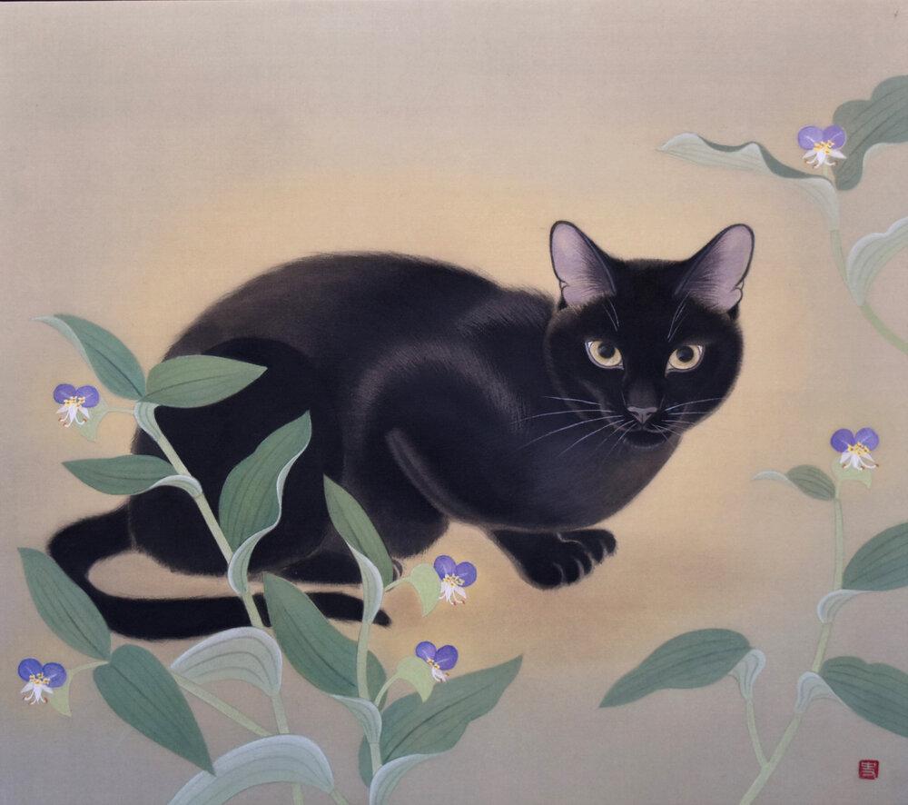 Fumika Koda, Black Cat