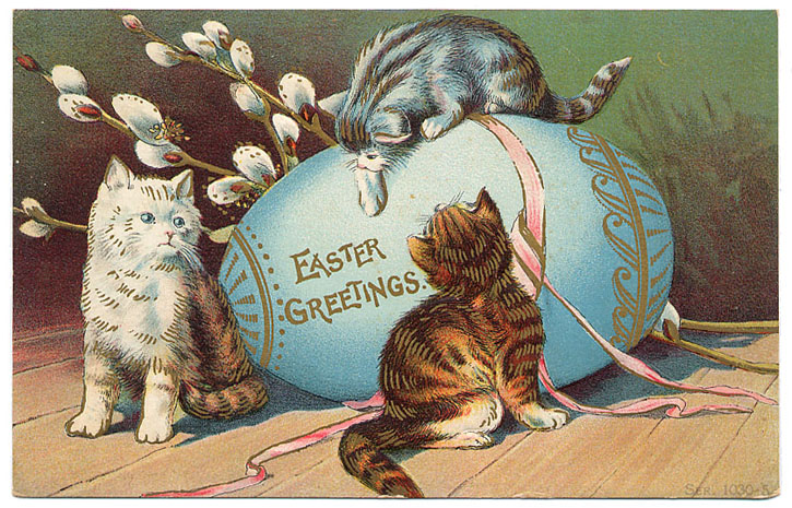 Happy Easter cats