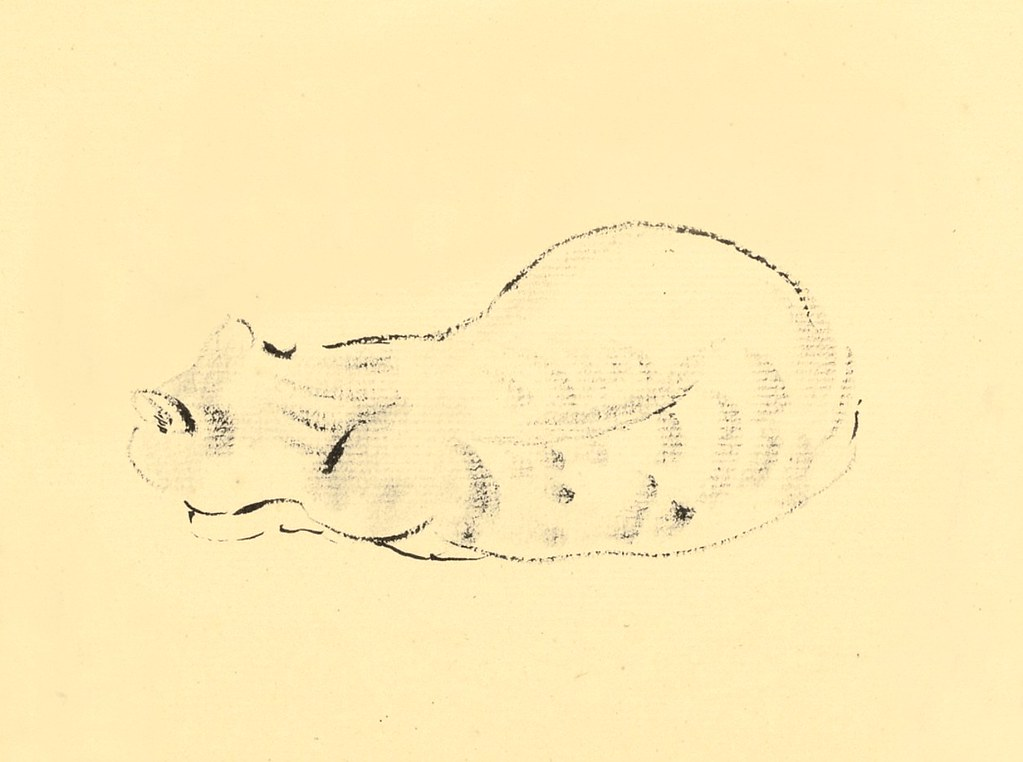 Study of a Cat, Odilon Redon