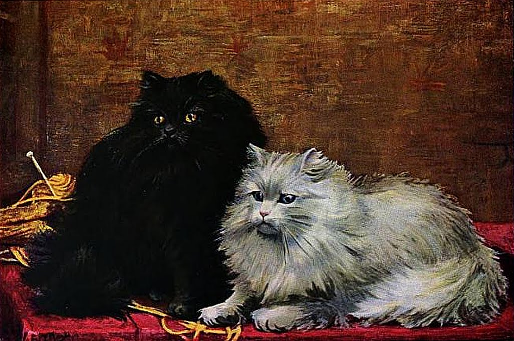 Black and White Persian cats, after a painting by William Luker Jr