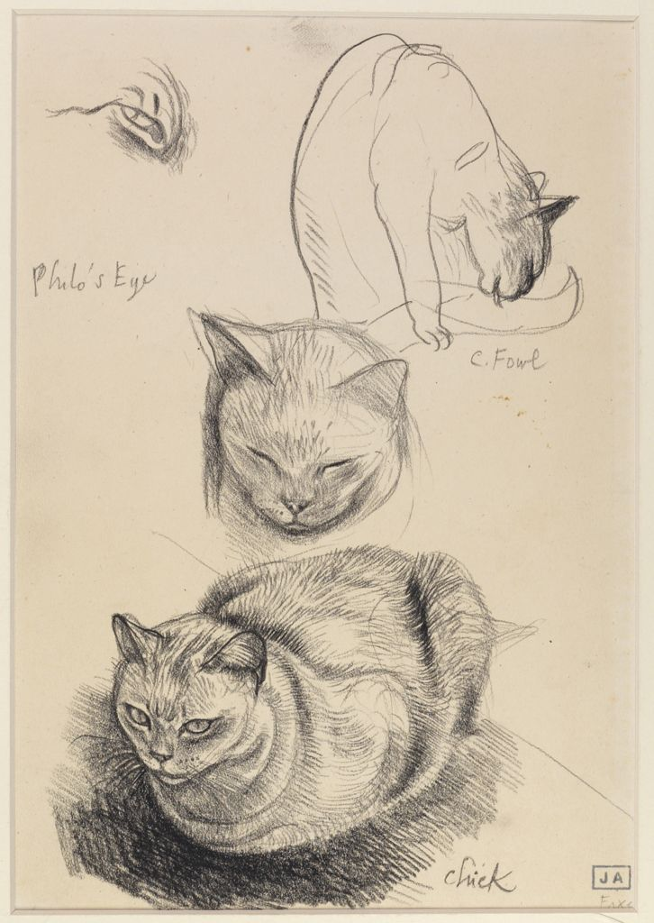 Sketches of a Cat, John Aldridge