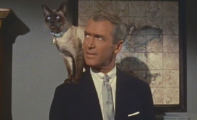Bell Book and Candle, James Stewart and Pyewacket