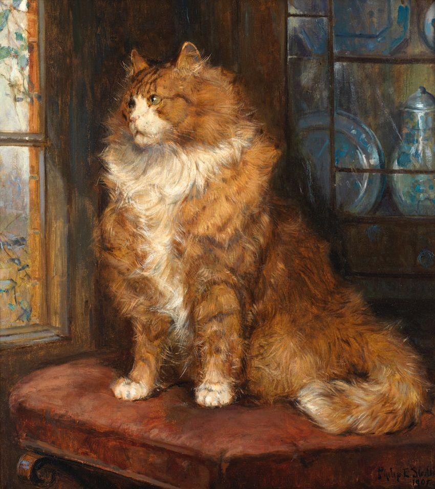 Ginger Cat, Clemetine Nielssen