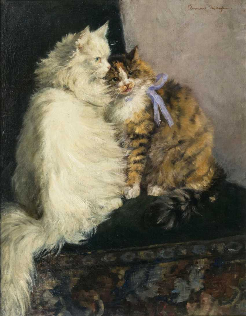 Two Cats, Clementine Nielssen