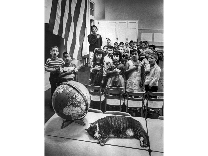 Sep. 14, 1964 The Elysian Heights Elementary catches a cat nap while a first grade class performs the flag salute. (John Malmin Los Angeles Times)