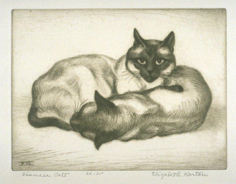 Two Siamese, Elizabeth Norton