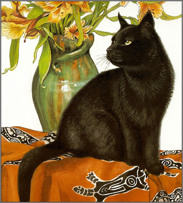 Chrissie Snelling, Black Cat