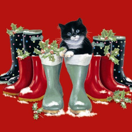 Chrissie Snelling, Christmas Cat