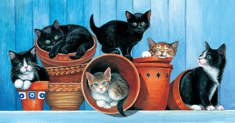 Chrissie Snelling, Potted Cats