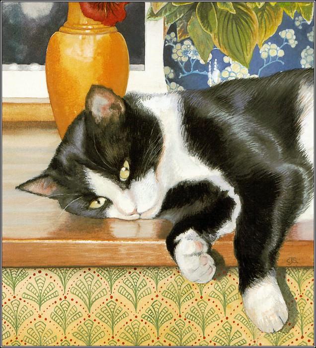 Chrissie Snelling, Tuxedo Cat