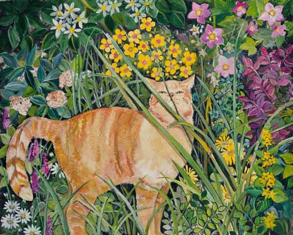 Cat and Long Grass, Hilary Jones