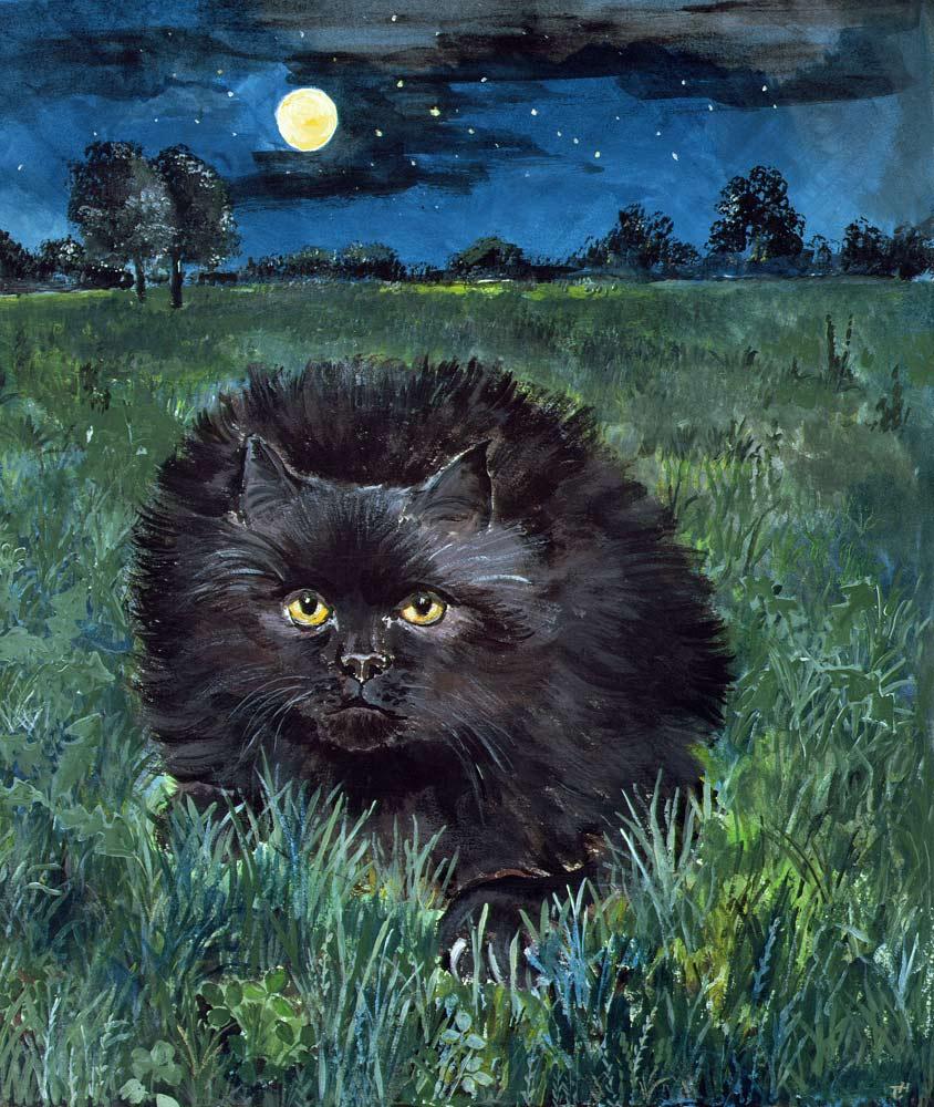The Cat in the Moon, Hilary Jones